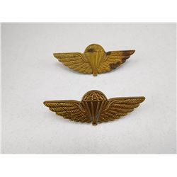 PARATROOPER JUMP WINGS