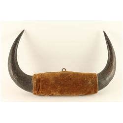 Antique Buffalo Horn Display