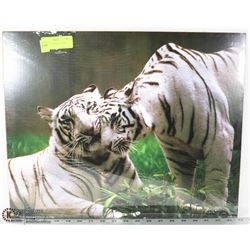 TWO WHITE SIBERIAN TIGERS - PRINT -
