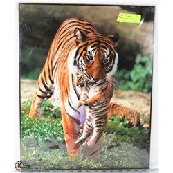 MOTHER TIGER CARRYING CUB PRINT -