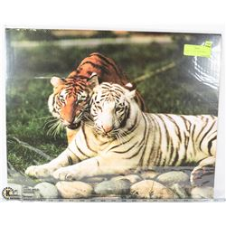 "WHITE & ORANGE TIGER PRINT - 20""X16"". -"