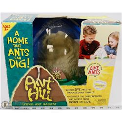 NEW KIDS INSECT LORE ANT HILL