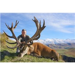 5-day New Zealand Red Stag Hunt for 1 Hunter and 1 Observer