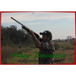 4-day Argentina High-volume Dove Hunt for 4 Hunters