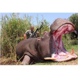 8-day Namibian (Caprivi Strip) Hippo, Crocodile and Plains Game Hunt for One Hunter