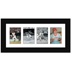 Pete Rose Photo Series