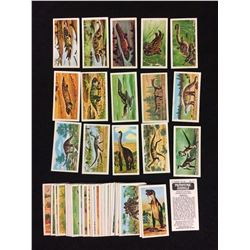 PREHISTORIC ANIMALS TRADING CARDS LOT
