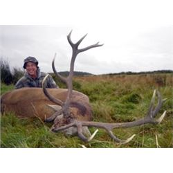 Scotland Red Stag Hunt             International Adventures Unlimited