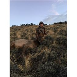 Idaho Cow Elk Hunt +Youth hunter for Free!         Big Lost River Outfitters