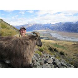New Zealand Bull Tahr        Southern Mountain Adventures
