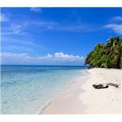 Belize Fishing and Diving for 2