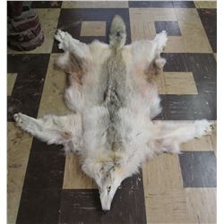 Tanned Canadian Wolf Pelt
