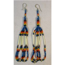 Native American Beaded and Quilled Earrings