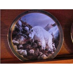 COLLECTOR PLATES - ANIMAL