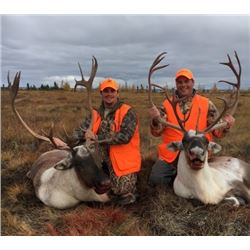 7 Day Resident Caribou Hunt in the 2018 or 2019 season for 2 hunters at The Lodge At Little Duck