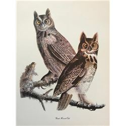 c1950 Audubon Print, Great Horned Owl