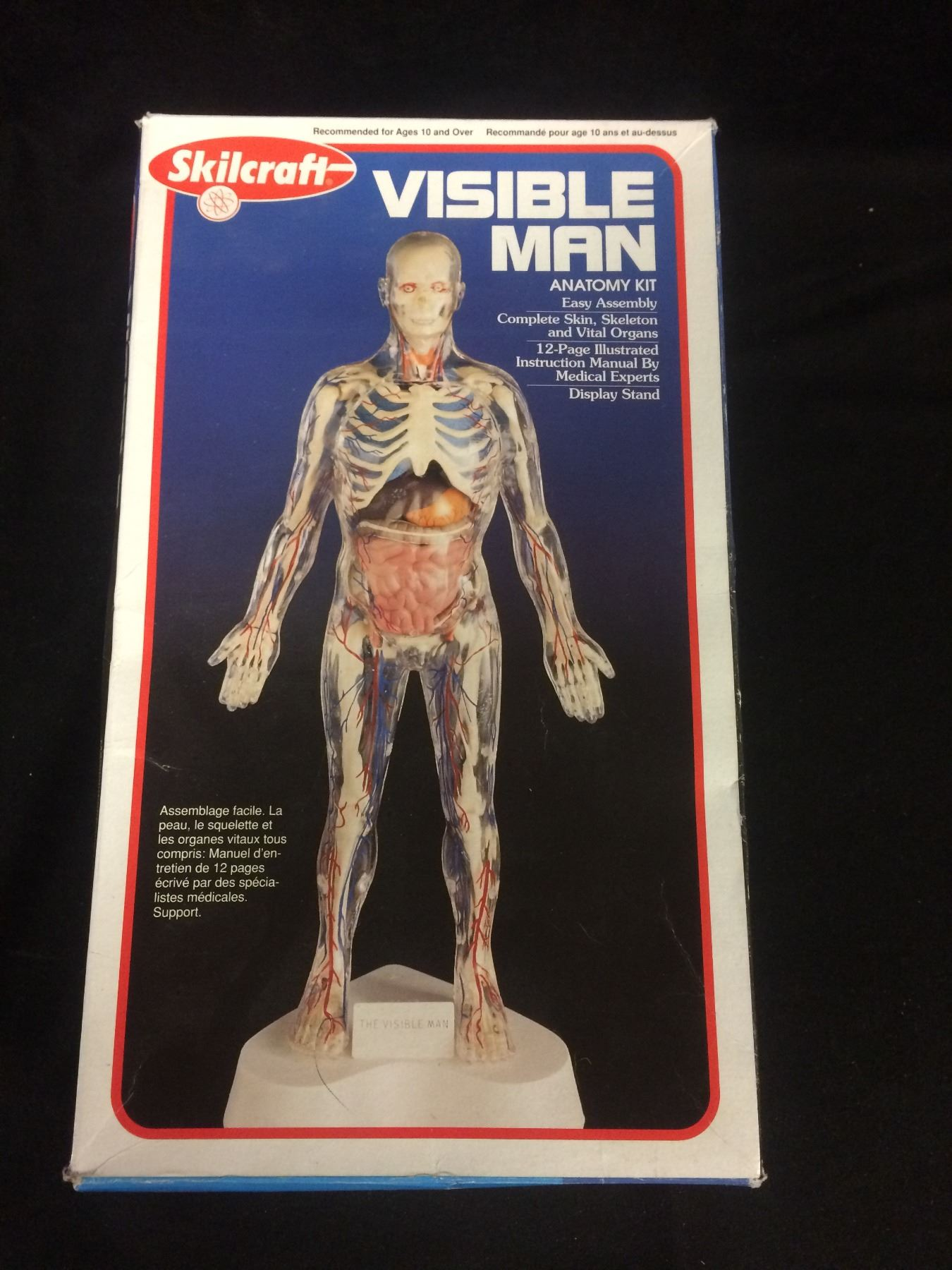 SKILCRAFT VISIBLE MAN ANATOMY KIT IN BOX