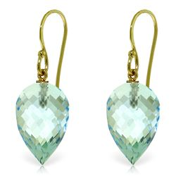Genuine 22.5 ctw Blue Topaz Earrings Jewelry 14KT Yellow Gold - REF-44K5V