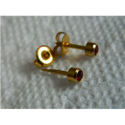 """EARRINGS - """"STUDEX"""" - GOLD PLATED - JANUARY BIRTHSTONE"""