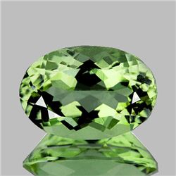 Natural Green Amethyst 18.72 Cts - FL