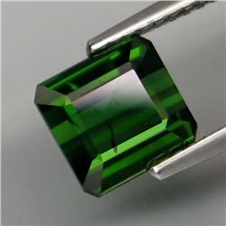 Natural Top Green Tourmaline 2.47 Cts