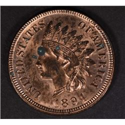 1894 INDIAN CENT BU, SPOT OBV.