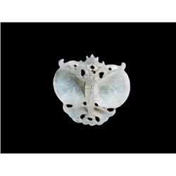 Antique Qing Dynasty White Jade Butterfly Amulet