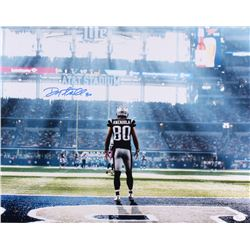 Danny Amendola Signed Patriots 16x20 Photo (JSA COA)