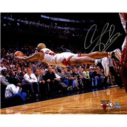 Dennis Rodman Signed Bulls 16x20 Photo (Steiner COA)