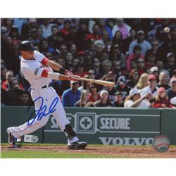 Will Middlebrooks Signed Red Sox 8x10 Photo (MLB Hologram)