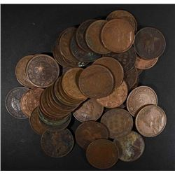 50 MIXED DATE AVE CIRC CANADIAN LARGE CENTS