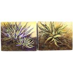 2 Original Oil Agave Paintings by Savarese