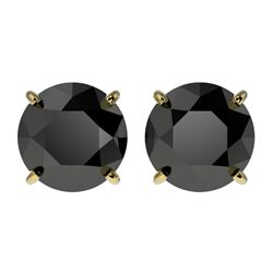 2.60 CTW Fancy Black VS Diamond Solitaire Stud Earrings 10K Yellow Gold - REF-52M8H - 36685