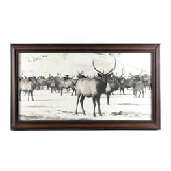 Original K.F. Roahen Yellowstone Elk Photograph