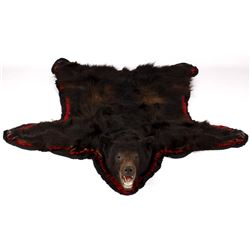 Large Montana Black Bear Taxidermy Trophy Rug