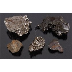 Collection of Meteorite Fragments