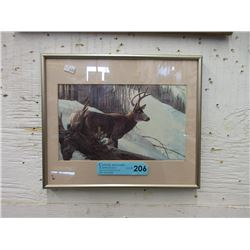 Robert Batman Framed Print of an Elk