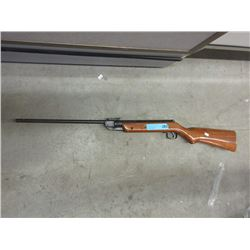 Pellet Rifle with Wood Stock