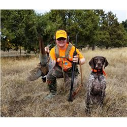 1 Day Pheasant Hunt for 2 hunters at Palomar Mountain