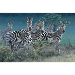 """Signed, Limited Edition """"Stars and Stripes Forever"""" Zebra Giglee"""