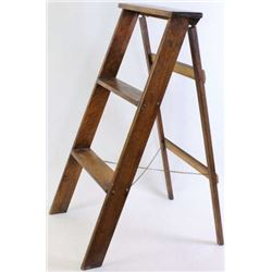Globe Werneke 2 rung step ladder