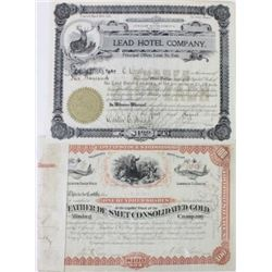 Collection of 2 South Dakota stock certificates