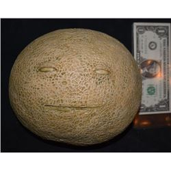 ZZ-CLEARANCE SAUSAGE PARTY GROCERY STORE UNUSED CANTALOUPE