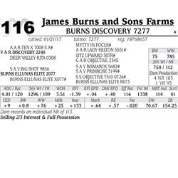 Lot - 116 - Burns Discovery 7277