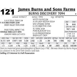 Lot - 121 - Burns Discovery 7094