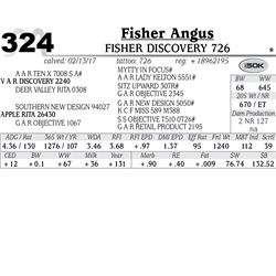 Lot - 324 - Fisher Discovery 726