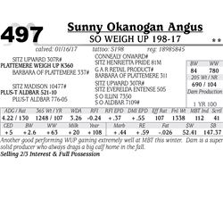 Lot - 497 - SO Weigh Up 198-17