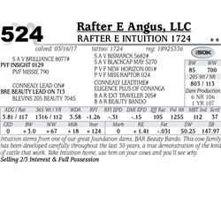 Lot - 524 - Rafter E Intuition 1724