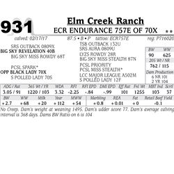 Lot - 931 - ECR ENDURANCE 757E OF 70X