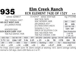 Lot - 935 - ECR ELEMENT 742E OF 132Y